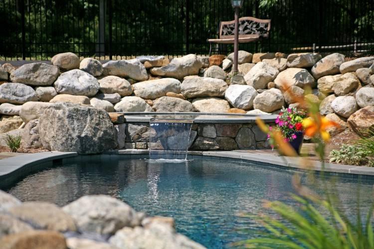 Infinity edge natural swimming pool