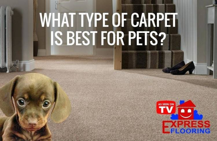 Carpeting a staircase needs a little more consideration than the other rooms  or areas of the house