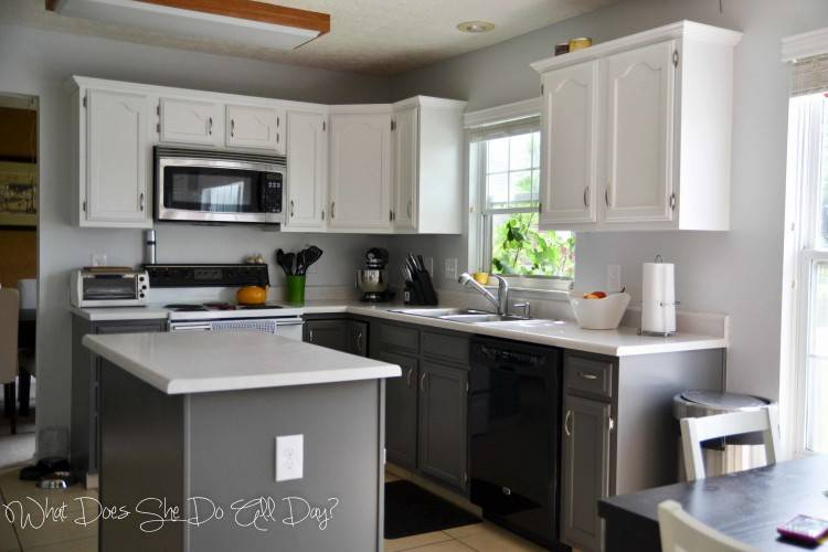 Do It Yourself Kitchen Cabinet Painting Ideas Diy Awesome Cabinets