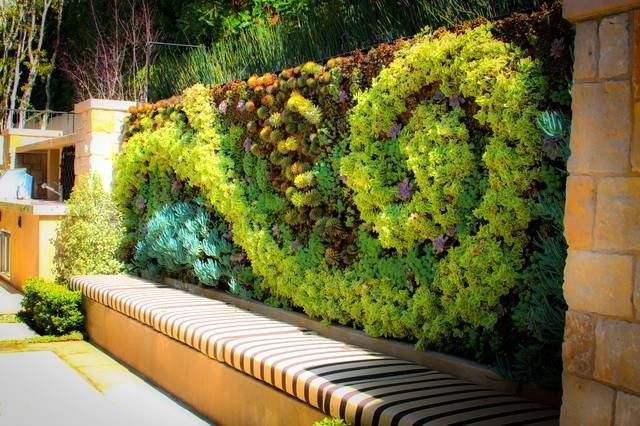 outdoor living wall outdoor living walls outdoor living wall ideas garden  wall landscape contemporary with vertical