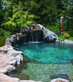 Pond & Water Garden Design