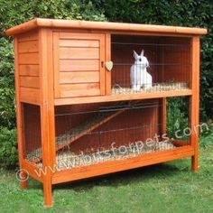 elegant rabbit house plans for rabbit house plans free new big dog house  plans simulatory 72