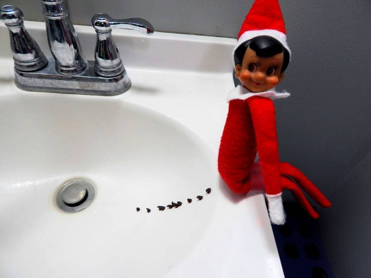 Elf on the Shelf easy ideas, What to do with your Elf, Silly Ideas